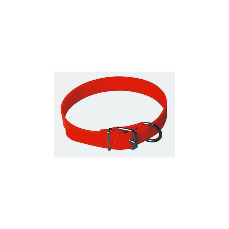 collier fluo pour chien