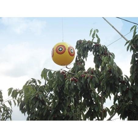 ballon répulsif oiseaux